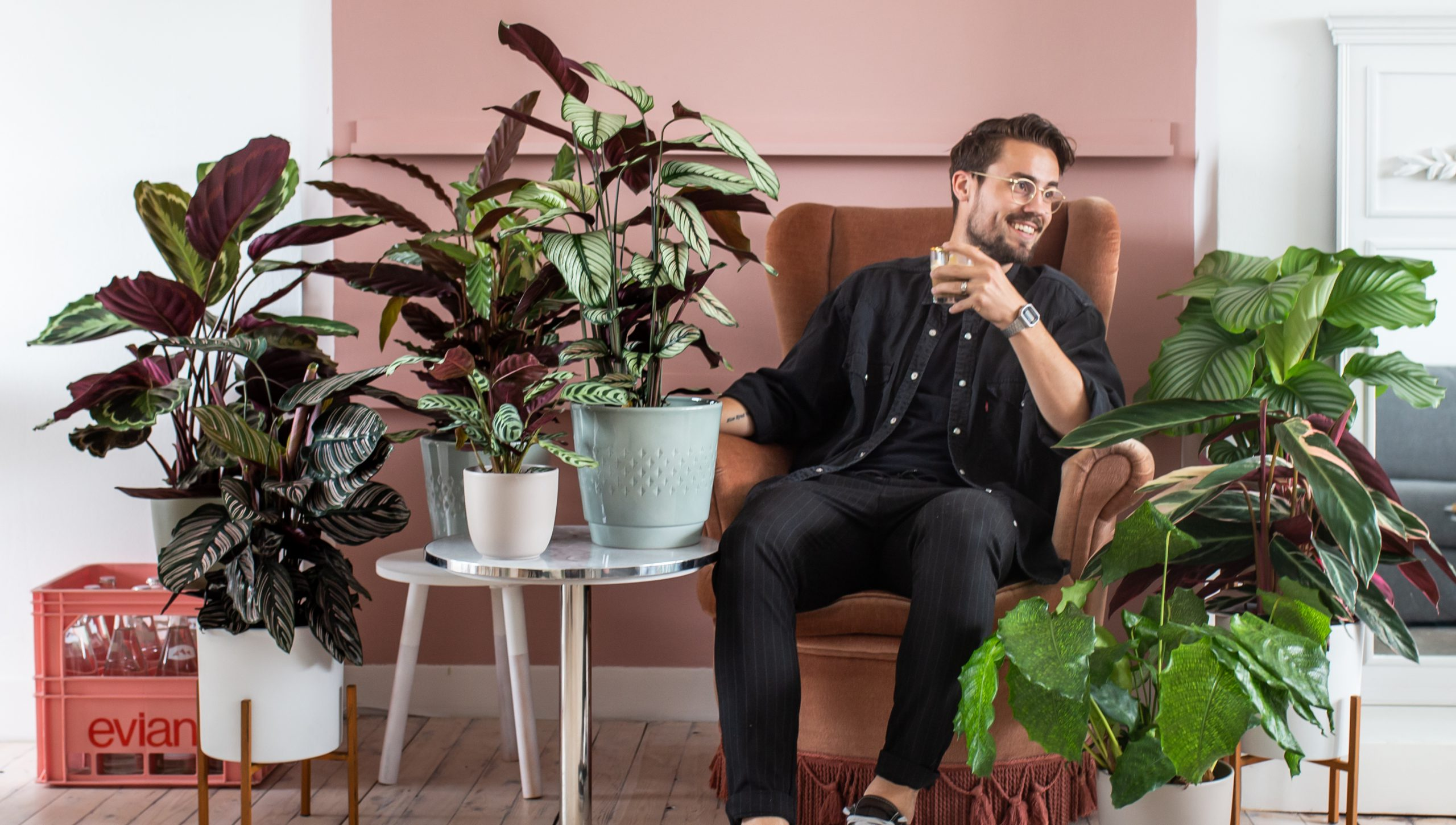 Interieurfoto kamerplanten met roze achtergrond